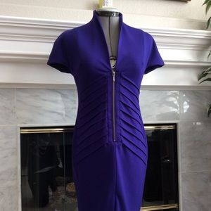 CATHERINE MALANDRINO Fitted Dress-Violet-SizeS NWT